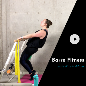 online barre class video product