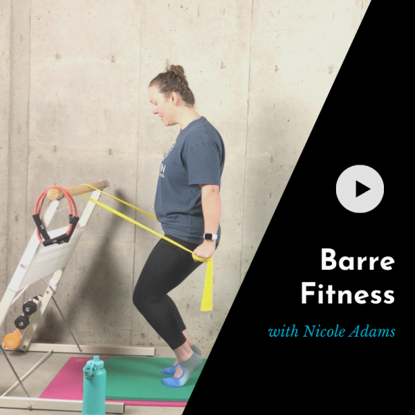 product picture for barre class video