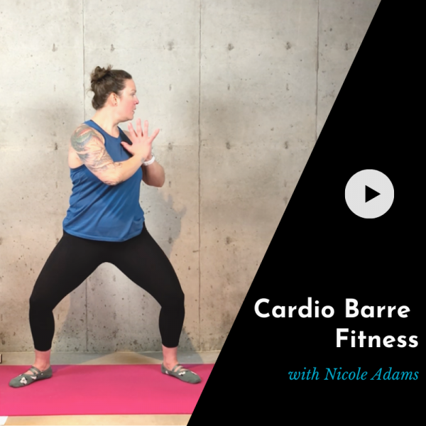 product picture for cardio barre video