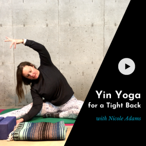 product picture for an online yoga class