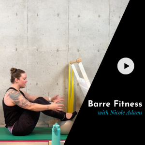 product picture for a barre class video