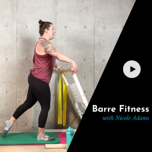 barre video product picture